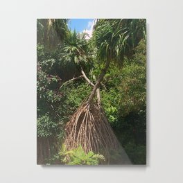 Screw Pine Trees Metal Print