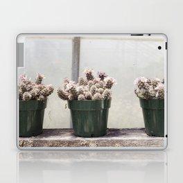 Three Little Cacti Laptop & iPad Skin