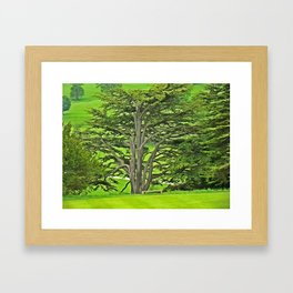 Old English Tree Framed Art Print
