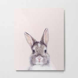 Baby Rabbit, Bunny With Pink Background, Baby Animals Art Print By Synplus Metal Print