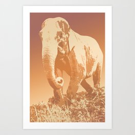 EVENING ELEPHANT Art Print