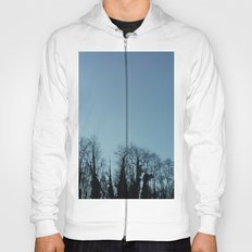 Fog and Forest- wood,mist,romantic, greenery,sunset,dawn,Landes forest,fantasy Hoody