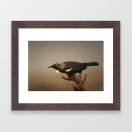 Tui on Flax Framed Art Print