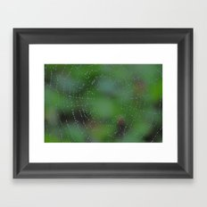 Wet Web Framed Art Print