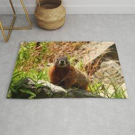 Marmot On A Rock Rug