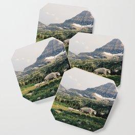 Montana Mountain Goat Family Coaster