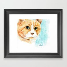 Stan the grumpy cat Framed Art Print