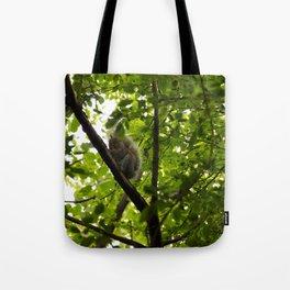 Peek a boo Squirrel Tote Bag