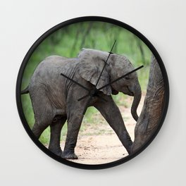 Mom and me - Africa wildlife Wall Clock