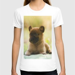 Malinois puppies in the soap blowing game T-shirt