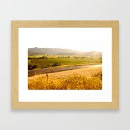 070826.005 Framed Art Print
