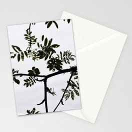 Rowan branch against the sky Stationery Cards