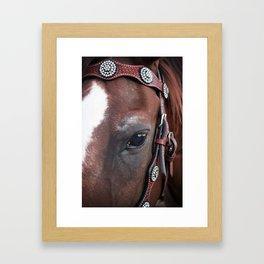 Eye of the Horse Framed Art Print