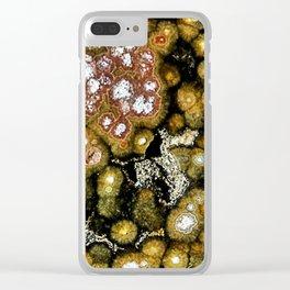 Ocean Jasper 2 Clear iPhone Case