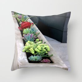 Linear Succulence Throw Pillow
