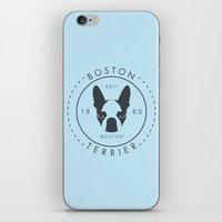 boston terrier iPhone & iPod Skins featuring Boston Terrier by Lulo The Boston Terrier