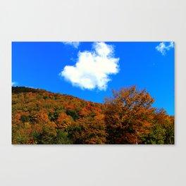 Mt. Pisgah - Westmore, VT Canvas Print