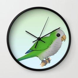 Curious parrot Wall Clock