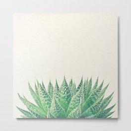 Lace Aloe Metal Print