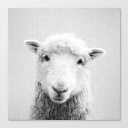 Sheep - Black & White Canvas Print