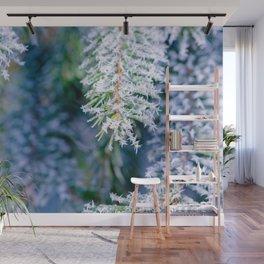 Bitter Cold, Cool Fir Tree Wall Mural