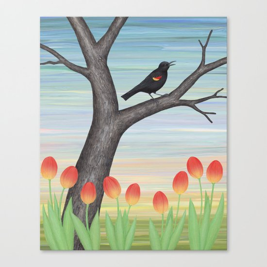 red winged blackbird and tulips Canvas Print