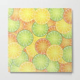 Orange Lemon and Lime  Citrus Fruit Slices Metal Print