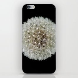 Dandelion Love iPhone Skin