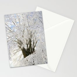 Icy Branches Stationery Cards