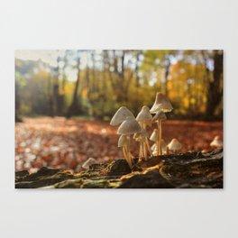 That Autumn Feeling Canvas Print