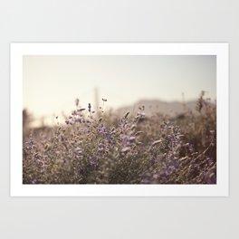 Purple Field Art Print