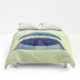 Exhibitionist  Comforters