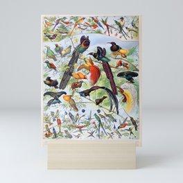 Adolphe Millot - Oiseaux B - French vintage poster Mini Art Print