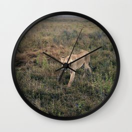 Lone Lion. Wall Clock