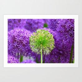 Violet green flower Art Print