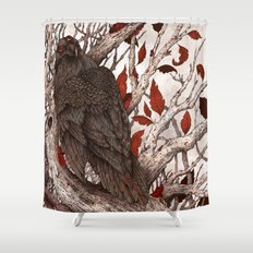 A Raven In Winter Shower Curtain