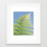 fern Framed Art Prints featuring Fern by Pati Designs