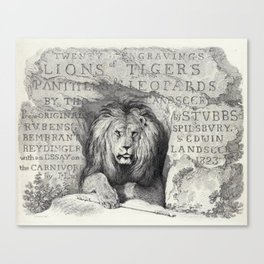 Vintage Lion etching Canvas Print