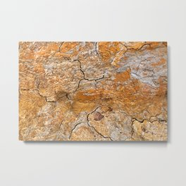 Cracked Earth Texture Metal Print