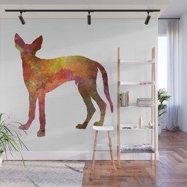 Ibizan Hound dog in watercolor Wall Mural