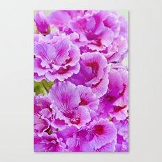 Pink Geranium I Canvas Print