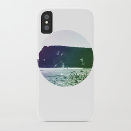 colored birds iPhone Case