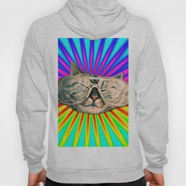 GLASSES CAT Hoody