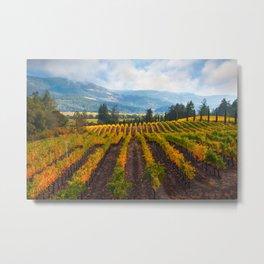 Autumn Vineyard Vista Metal Print