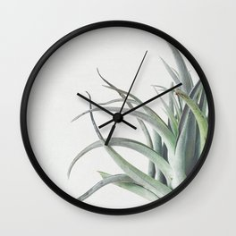 Air Plant II Wall Clock