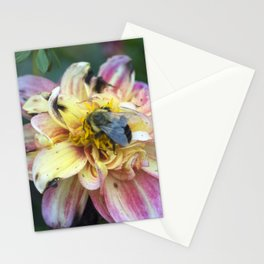 Longwood Gardens Autumn Series 355 Stationery Cards