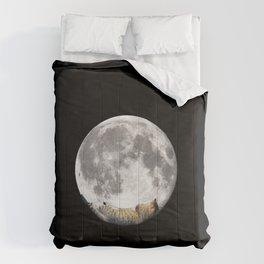 Sleeping cat with the Moon Comforters