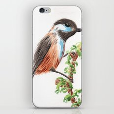Watercolor Bird iPhone & iPod Skin