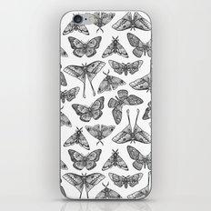 Lepidoptera iPhone Skin