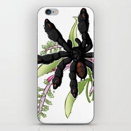 PSALMOPOEUS IRMINIA iPhone Skin
